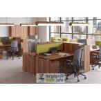 Laplábas íróasztalok